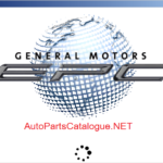 General Motors Asia, Africa GMIO EPC [04/2021] Parts Catalog